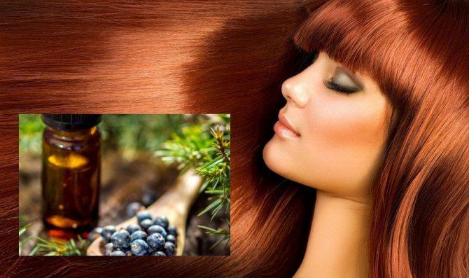 Масло можжевельника для красоты волос