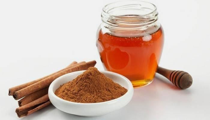 Мед и корица для приготовления краски в домашних условиях