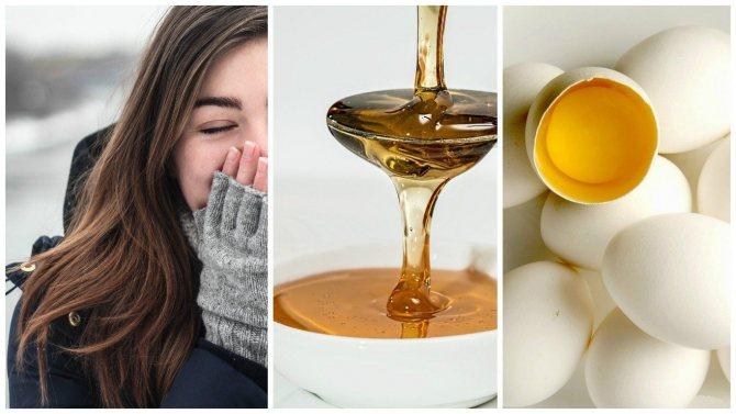 Мед и яйцо для кожи головы и волос в ночное время суток