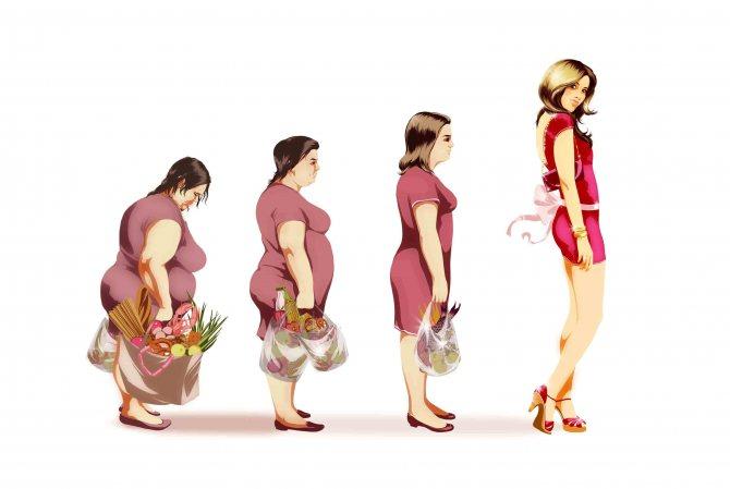 модельная диета отзывы
