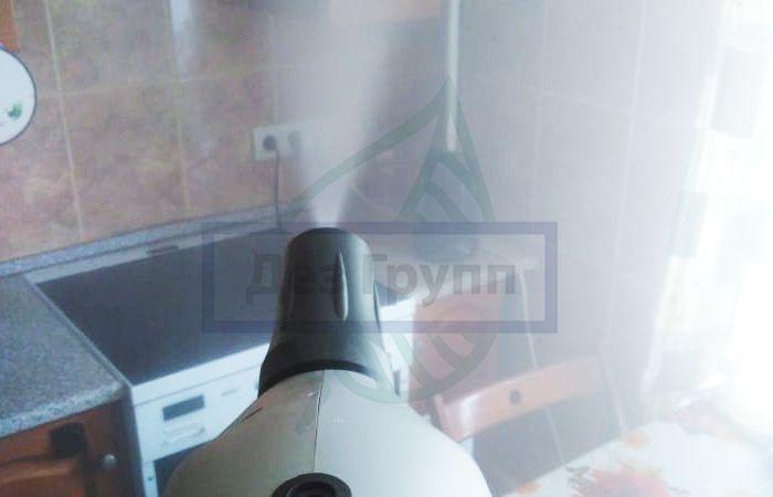 Мокрицы в квартире и как от них избавиться в Москве