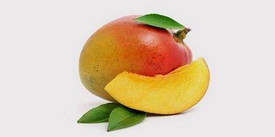 Может ли дозреть манго в домашних условиях