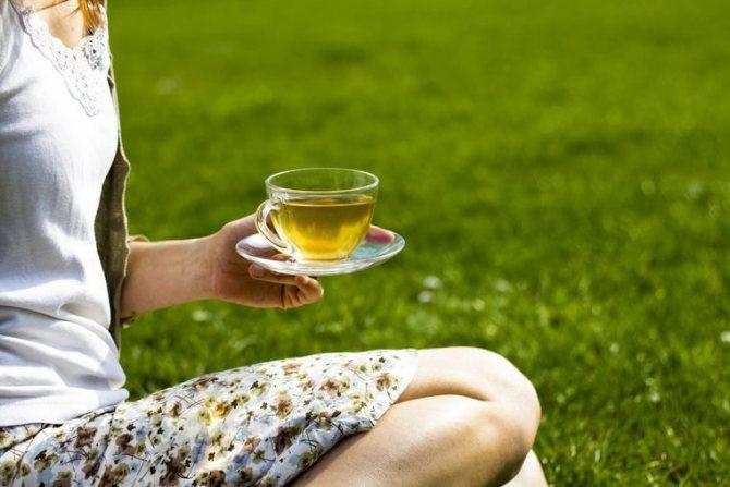 на диете на зеленом чае