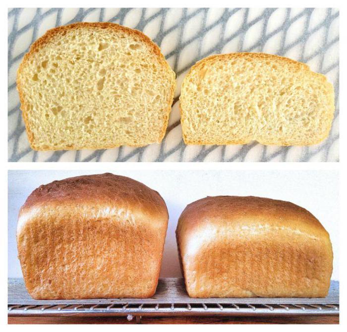 не поднимается тесто в хлебопечке что делать