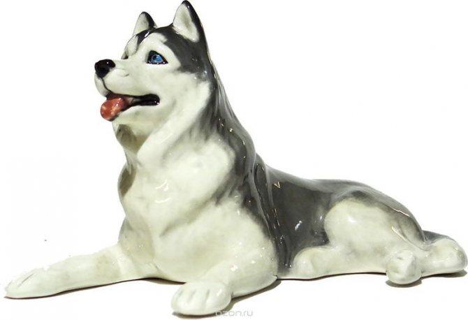 Несколько типичных значений образа пса