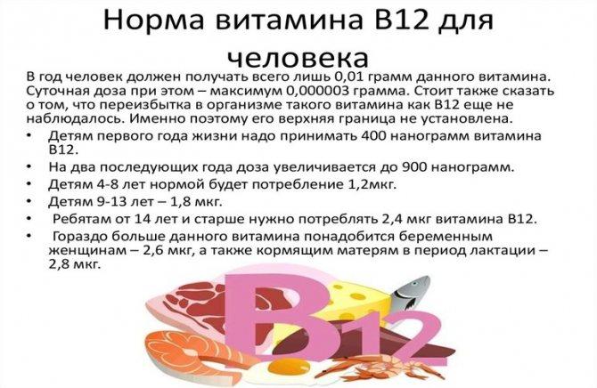 Нормы потребления витамина В12