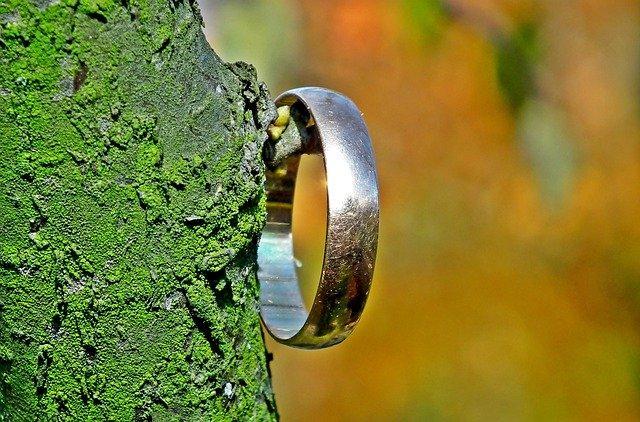 Обручальное кольцо висит на дереве