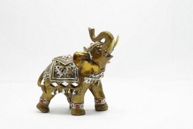 Один слон по фен-шуй