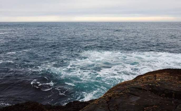 Океан. Среда обитания путассу