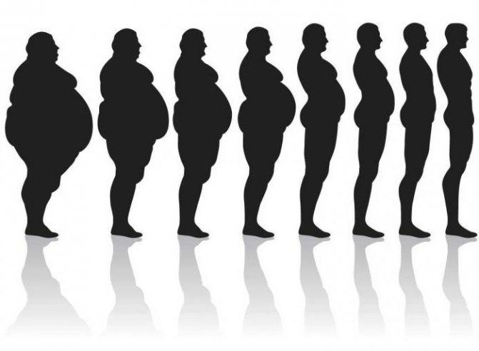 Основы правильного питания для похудения: меню
