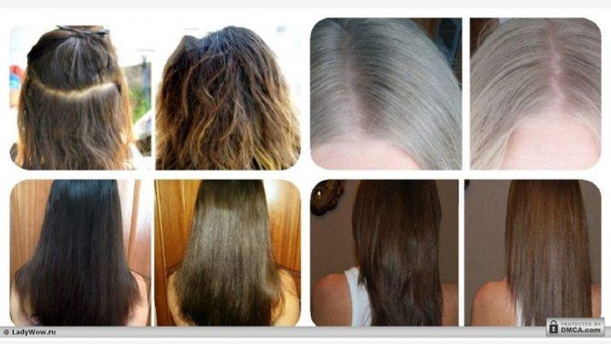 Осветление волос лимоном: фото до и после