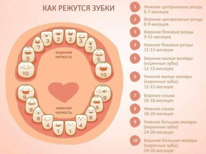 первые зубы малышей