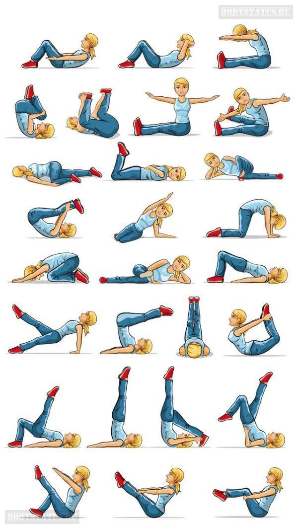 комплексы упражнений пилатес в картинках входят зал