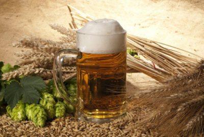 Маски из пива для роста волос. Пиво для волос: отзывы. Полезные свойства пивных масок для волос.
