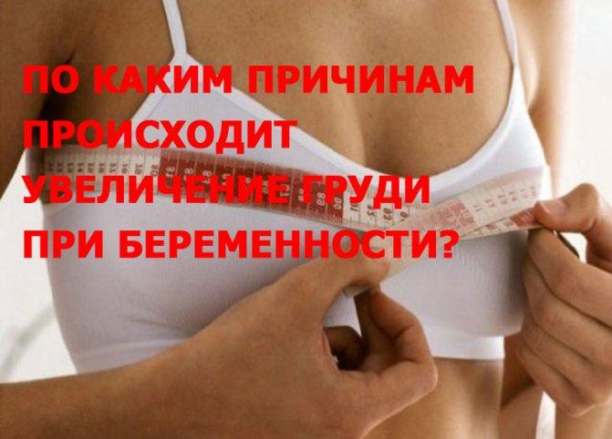 По каким причинам происходит увеличение груди при беременности