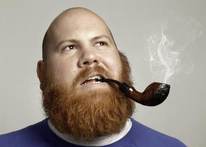 Почему рыжеет борода и почему борода рыжая