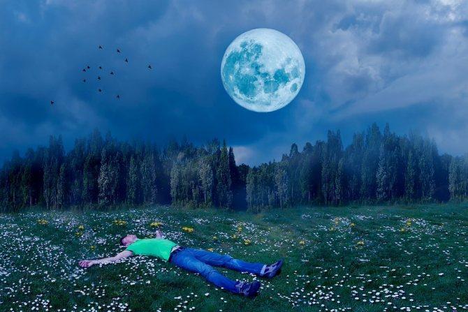 Почему снятся сны и что они значат?