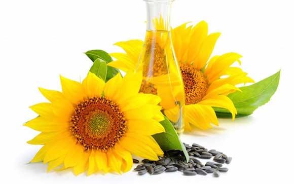 Подсолнечное масло польза и вред, как принимать натощак