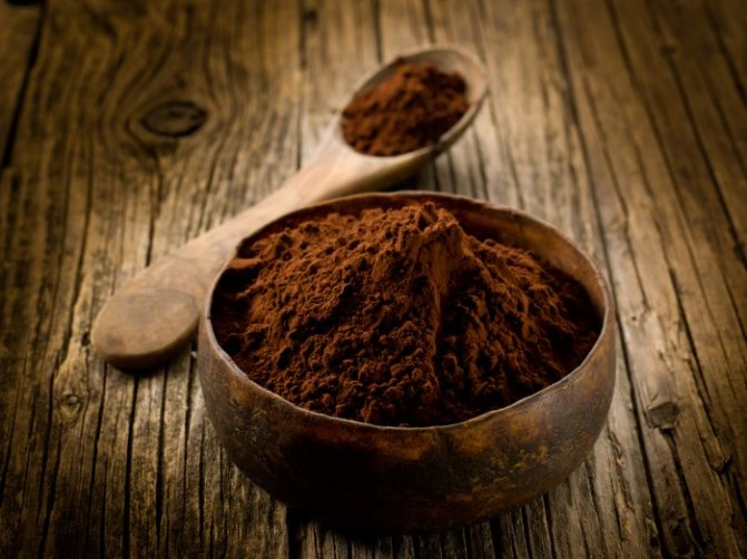 Порошок какао в миске