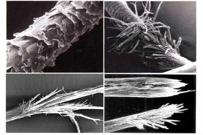 Поврежденные волосы под микроскопом