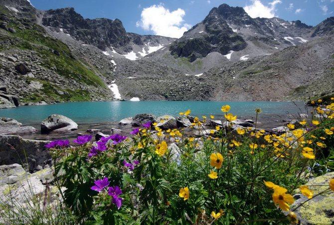 Прекрасные виды на горы Домбай станут естественным фоном для свадебных фотосессий.