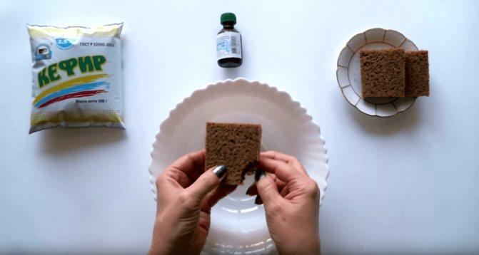 Приготовление хлебной маски для жирных волос
