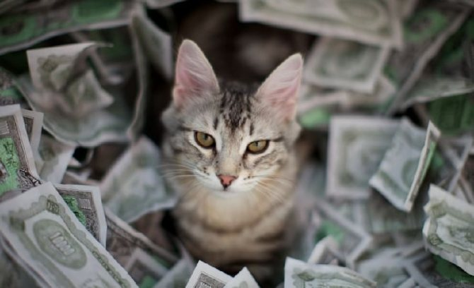 приметы на деньги.jpg