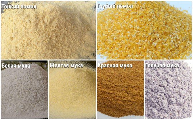 разновидности кукурузной муки