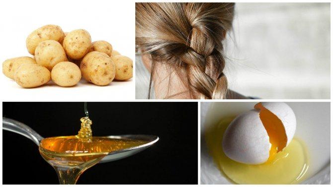 Рецепт для волос с картошкой, медом и яйцом на ночь