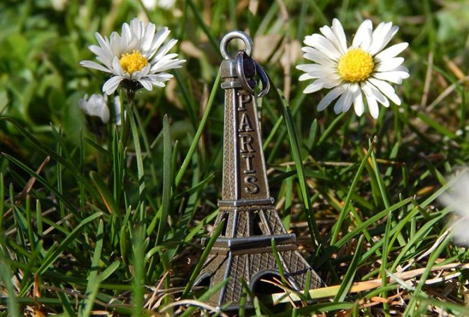 ромашка и Париж