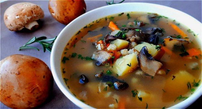 Самый вкусный суп из свежих грибов с перловкой