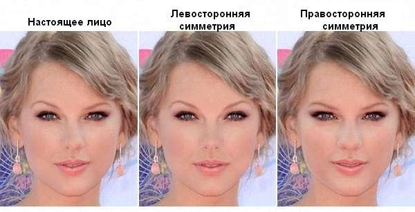 Симметрия лица на примере Тейлор Свифт