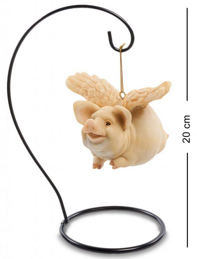 символ года свинья