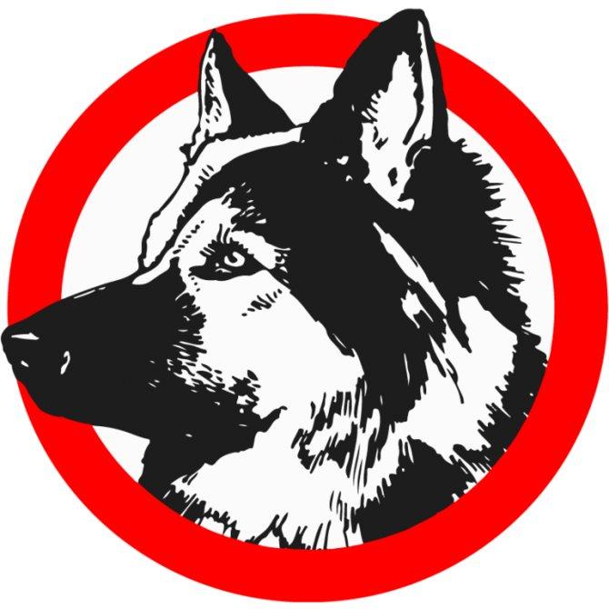 Символ пса в мировой культуре