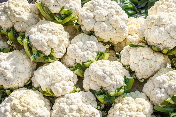 Сколько цветной капусты можно есть в день
