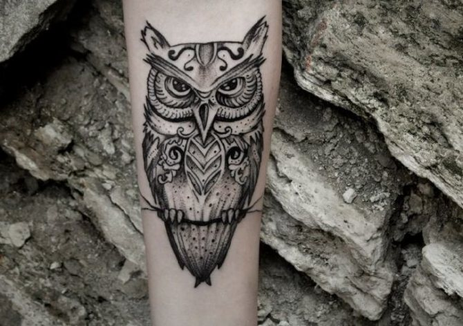 Сова - татуировка