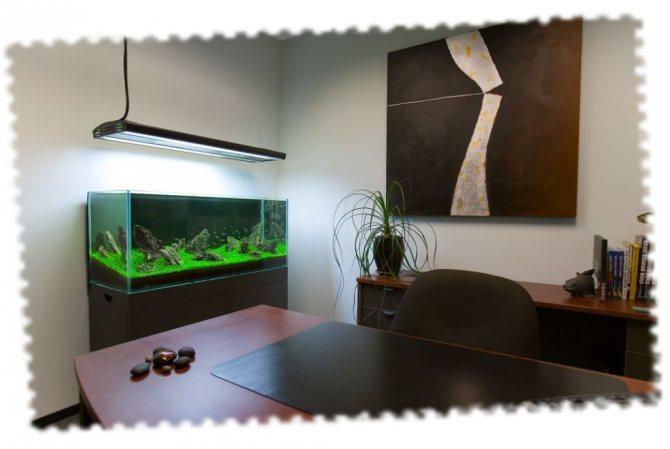 Стильный аквариум