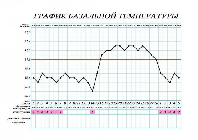 Строим график базальной температуры