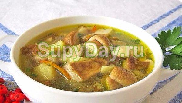 Суп с белыми грибами на курином бульоне