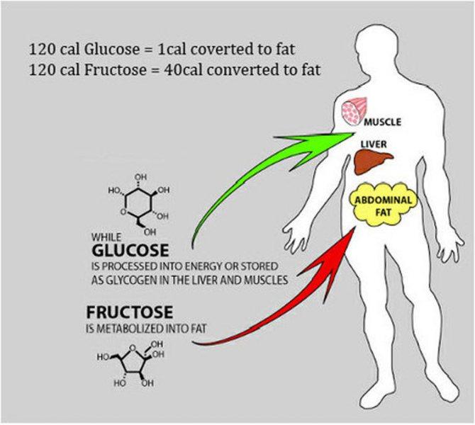 таблица содержания фруктозы в продуктах питания