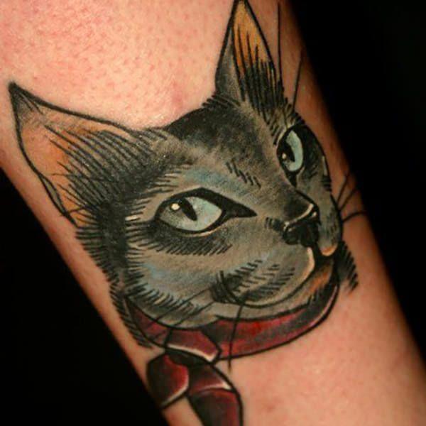 тату кот 6