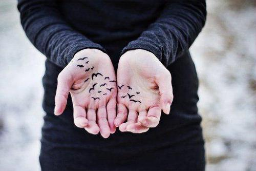 тату птиц на руке для девушек