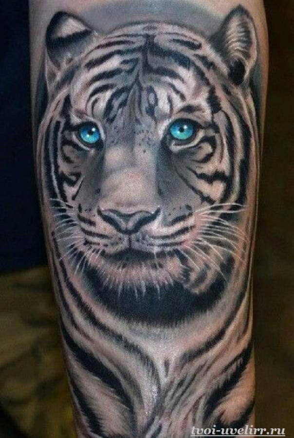Тату-тигр-и-её-значение-2