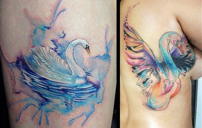 Татуировка - лебедь