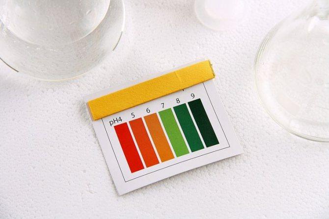 тест-полоски для измерения pH