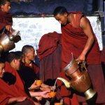 Тибетские монахи пьют чайсума