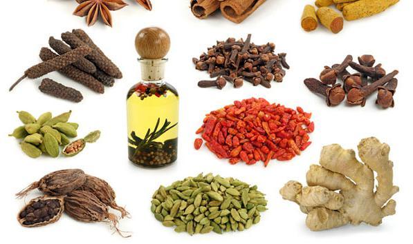 травы для похудения сбор трав для похудения рецепты