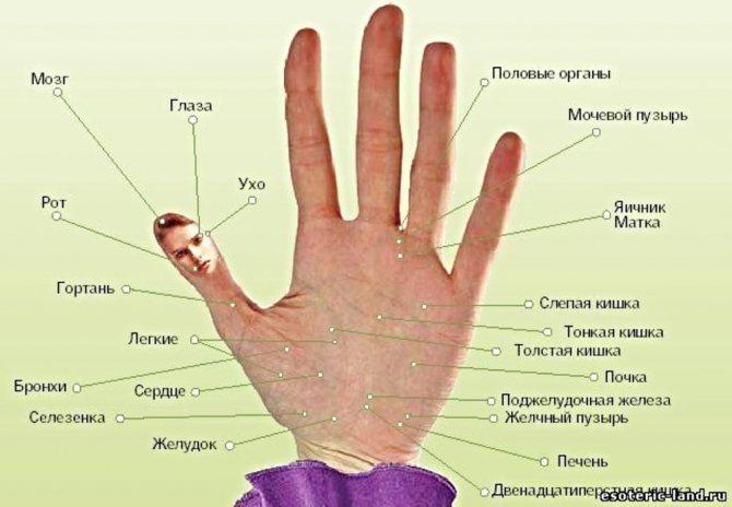 уход за кожей рук зимой, фото № 1