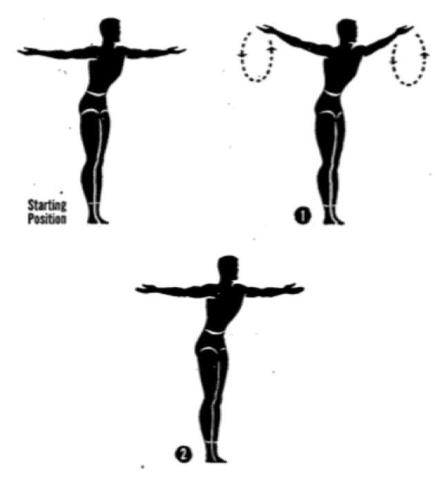 Упражнения для осанки. Круги руками