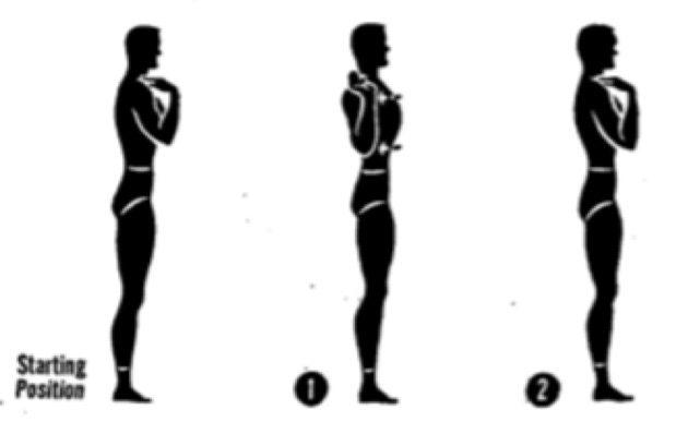 Упражнения для осанки. Круговые движения плечами